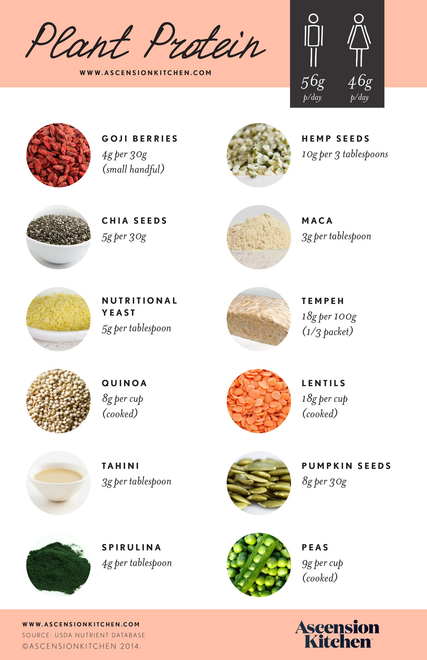 Vegan Protein Sources Plant Based  Less meat more plant based protein may prolong your life