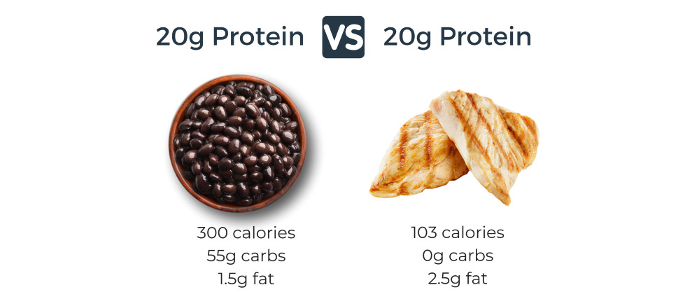 Vegan Protein Vs Animal Protein  20 Vegan Protein Sources to Help You Crush Your Macros
