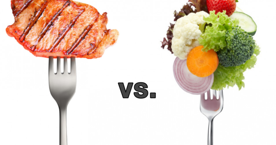 Vegan Protein Vs Animal Protein  Animal vs Ve able Does Protein Choice Matter – Living
